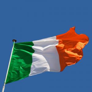 Windsor Flag